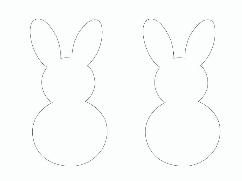 bunny template