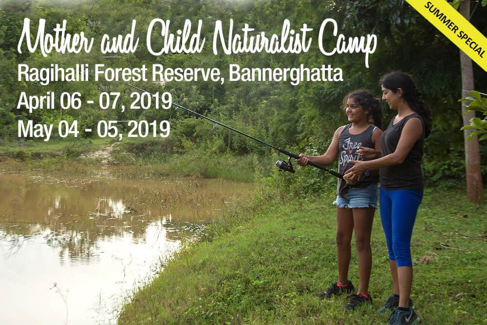 Mother & Child Naturalist Summer Camp 2019 Cover Image