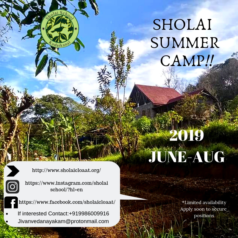 Sholai Summer Camp Cover Image