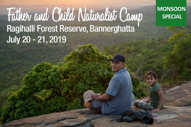 Father and Child Naturalist Camp 2019 Cover Image