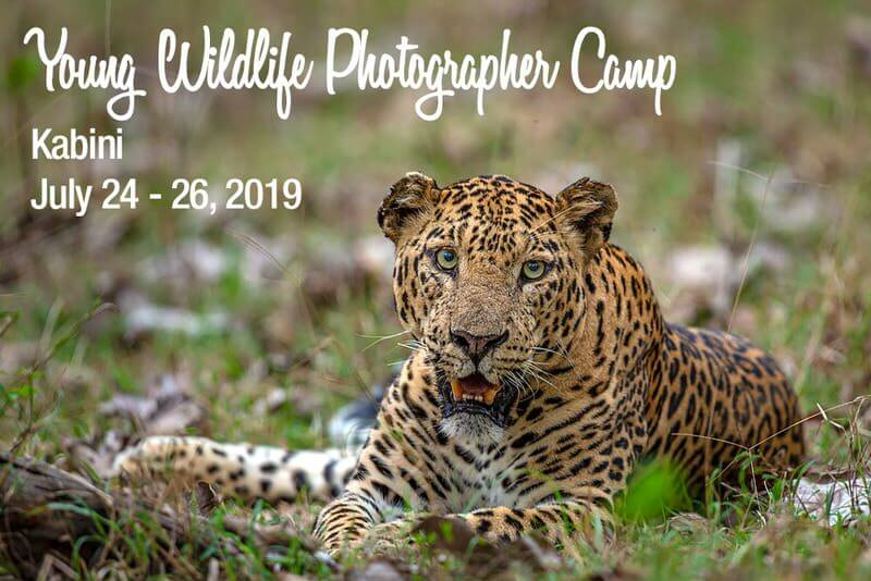 Young Wildlife Photographer Camp 2019 – Kabini Cover Image
