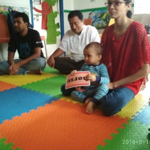 Your Baby Can Toddler Program