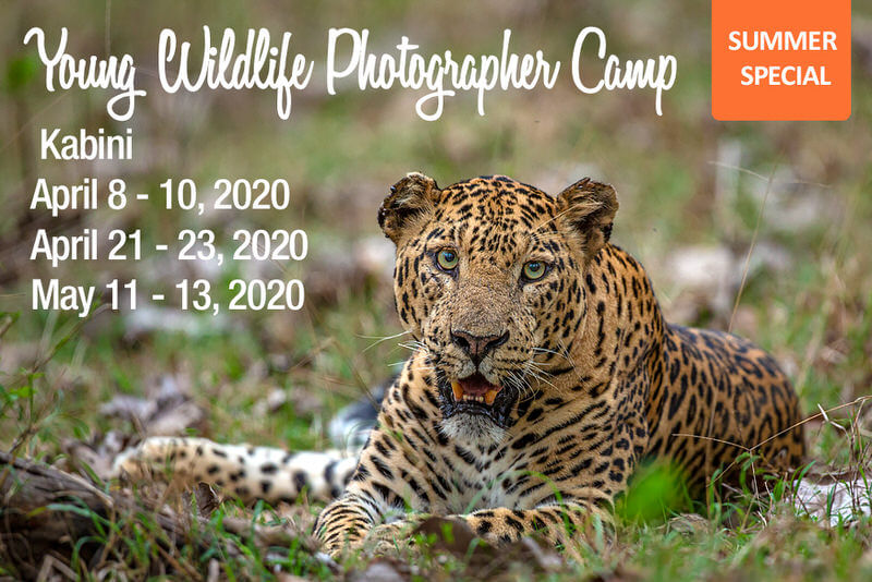 Young Wildlife Photographer Camp 2020 – Kabini Cover Image