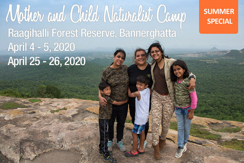 Mother & Child Naturalist Camp 2020 Cover Image