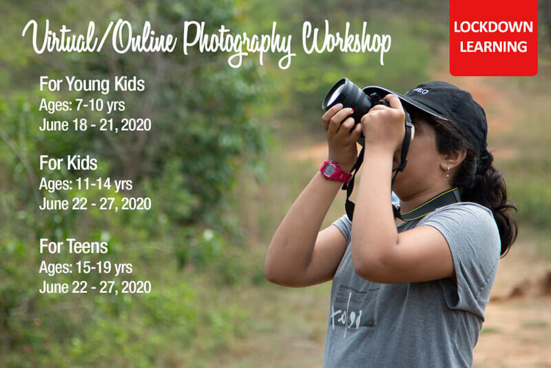 Virtual/Online Photography Workshop Cover Image