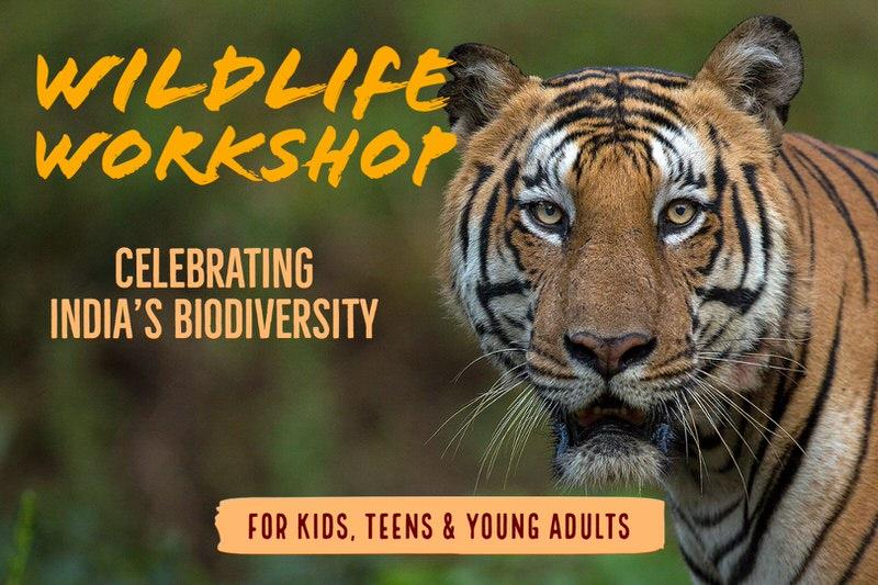 TOE Indian Wildlife Workshop Cover Image