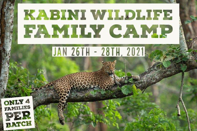 Kabini Family Wildlife Camp Cover Image